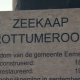 Zeekaap Rottumeroog documentaire